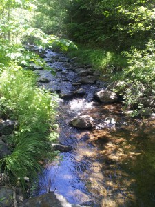 Creek @ Retreat Center